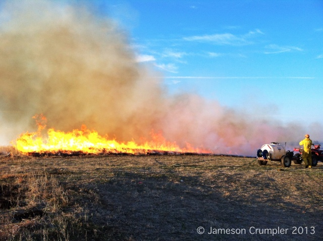 The final headfire for this year's burn at Griffith Prairie.  A spectacular sight for a job well done.