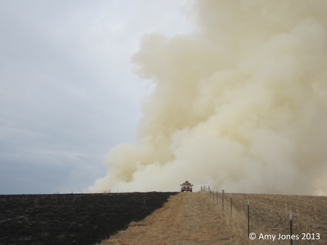 Amy Jones' (Development and Research Director for PPRI) view of the massive smoke column from the headfire over the hill.