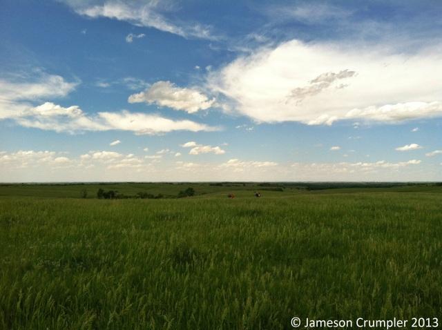 Cather Memorial Prairie near Red Cloud, NE.