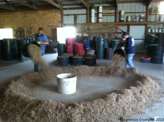 Seeds were mixed. Gallons became barrels (30 gallons = 1 barrel). The seed ring is formed, upon which all the seed in the