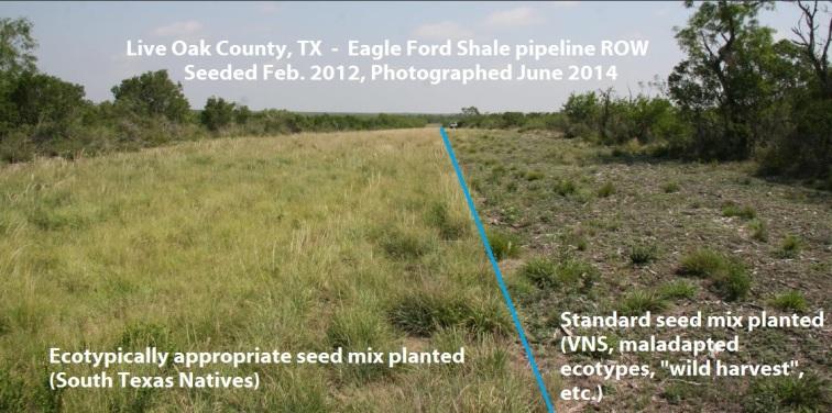 pipeline ROW demo STN